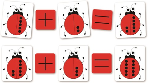 Magnetic Counting Ladybirds