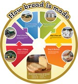 Food Cycles - Bread