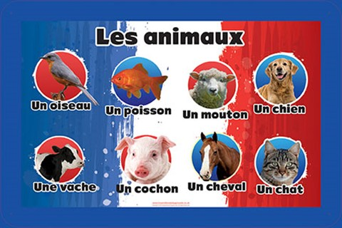 French Language Animals