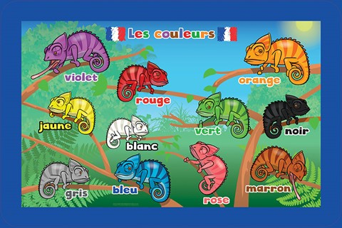 French Language Colours